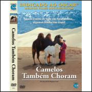 Dvd Camelos Também Choram