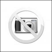 UM AMOR E UMA 45 - Renée Zellweger - DVDLight